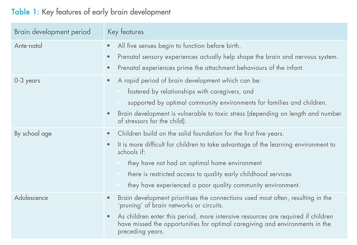 Table 1: Key features of early brain development